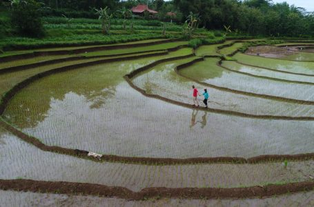 Empat Desa Wisata Indonesia Masuk Top 100 Destinasi Berkelanjutan Dunia