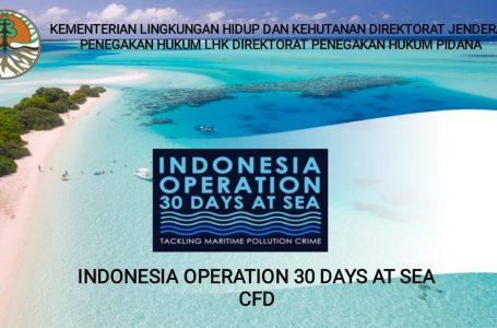 KLHK Luncurkan Operasi 30 Hari di Laut