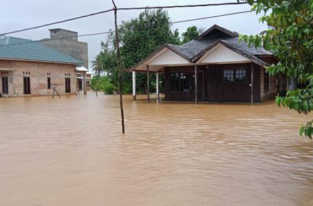 Akibat Banjir Di Kalsel Menimpa 10 Kabupaten-Kota