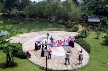 Pemprov DKI Anggarkan 5 M Bangun RTH di Cempaka Mas