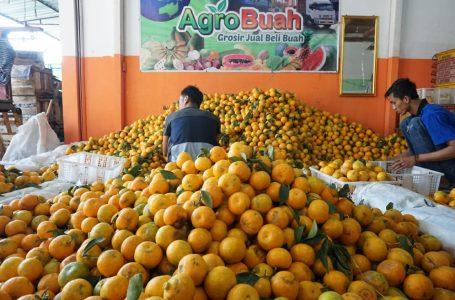 Genjot hortikultura Ekspor Buah-buahan untuk Tingkatkan Ekonomi